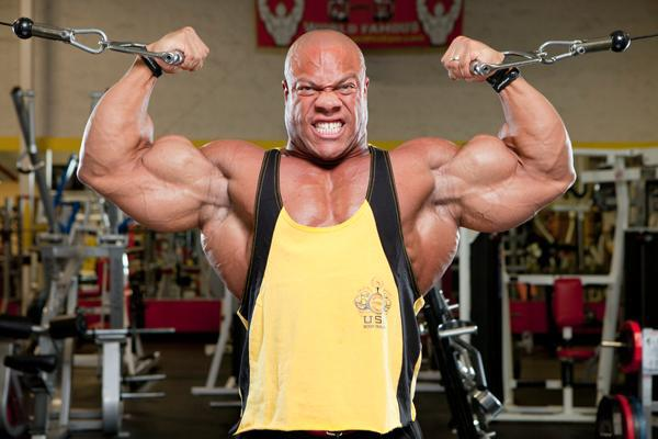 phil heath workout split